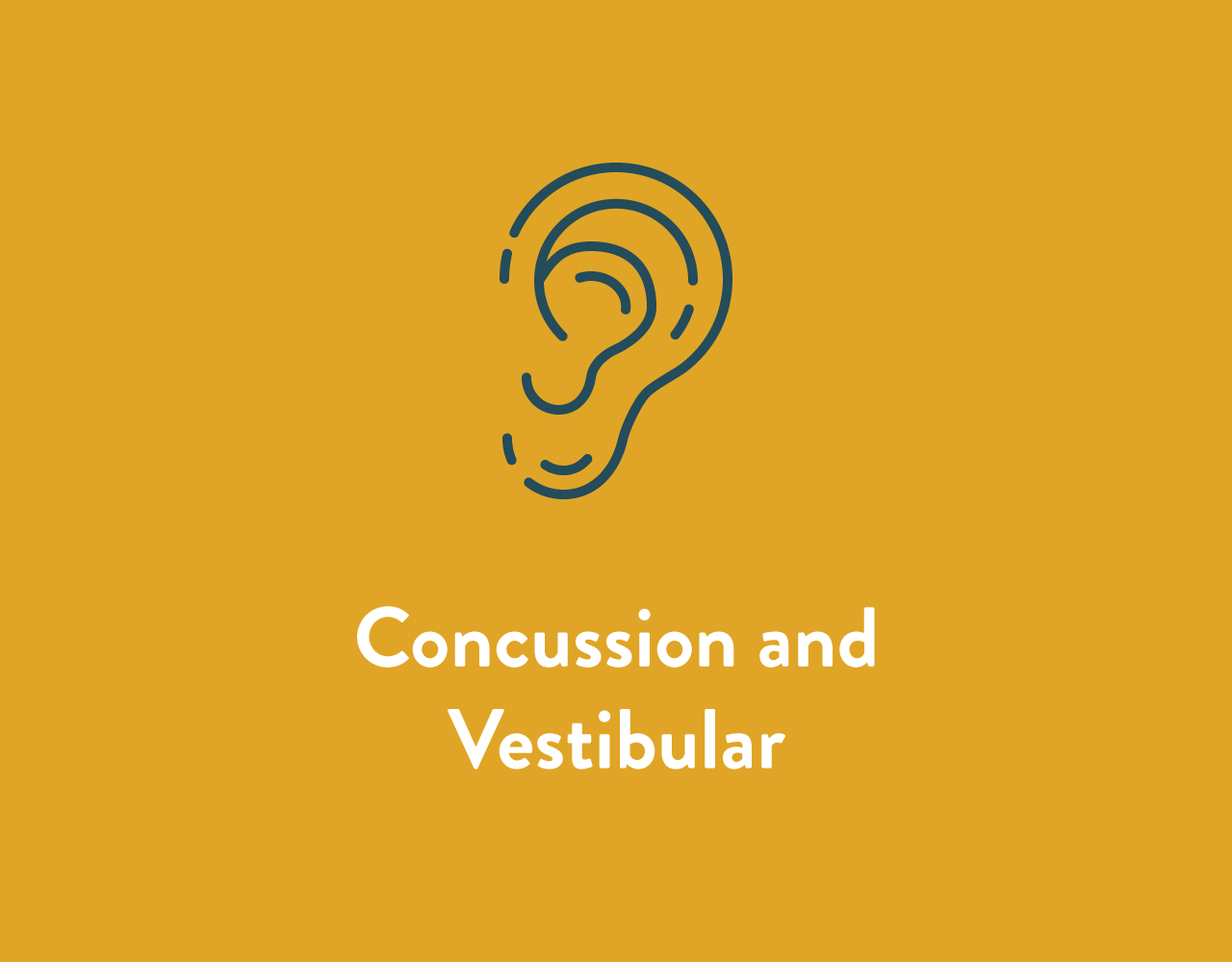 Concussion and Vestibular Service
