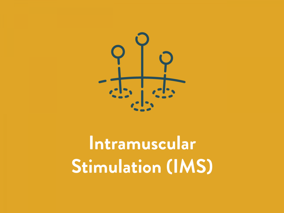 Intramuscular Stimulation IMS Service