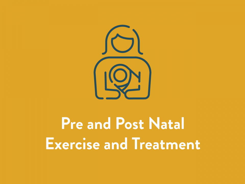 Pre and Post Natal Exercise and Treatment Service